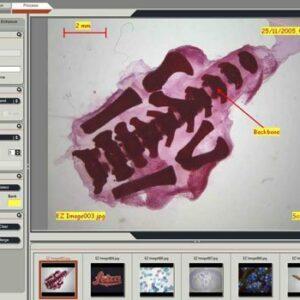 "Imaging software for Windows OS for ""EZ"" documentation and annotation Leica LAS EZ"