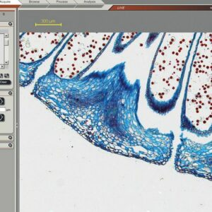 Imaging Software for Routine to Advance Imaging & Microscope Automation- Leica Leica Application Suite